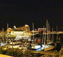 The Inner Harbour by islandphotoguy