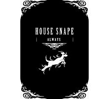 House Snape Photographic Print