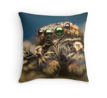 Marpissa muscosa male jumping spider high magnification photo Throw Pillow