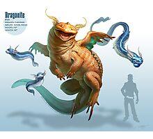 Dragonite Photographic Print