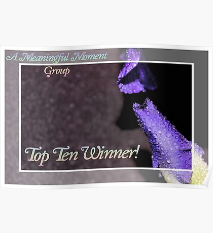 Banner - AMM - Top Ten Winner Poster