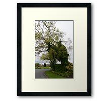 My life as a tree. Framed Print