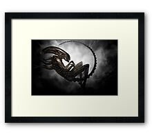 Small Beginnings Framed Print