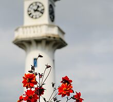 Roath Park Lighthouse Cardiff Wales 3 by mlphoto