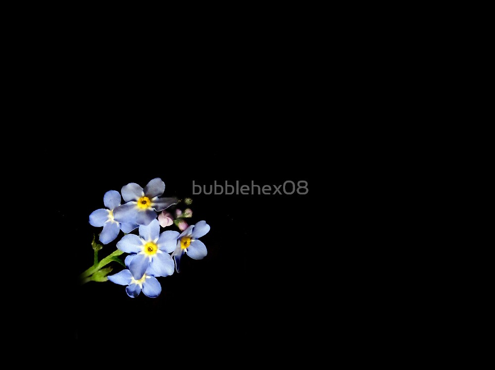 Forget-me-not by bubblehex08