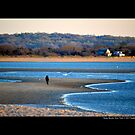 Afternoon At West Meadow Beach - Stony Brook, New York by © Sophie W. Smith