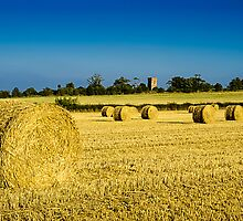 Cylindrical Hay Bales England by mlphoto