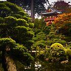 Japanese Garden San Francisco by mlphoto