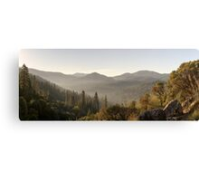 Yosemite National Park Forest Canvas Print