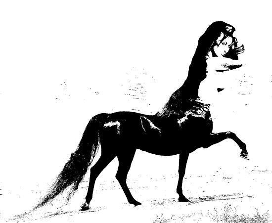 Half Horse Half Woman