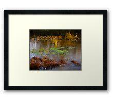 Kintbury Newt Ponds England Framed Print
