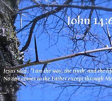 John 14:6 by DreamCatcher/ Kyrah