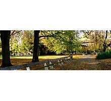 Park Benches in Prague Photographic Print