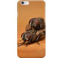 Flies Mating (Musca domestica) iPhone Case/Skin