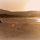 Body Boarder, Calverts Beach, Tasmania #2 by Chris Cobern