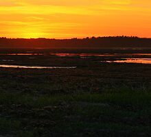 Sunset on the Marsh by Nazareth