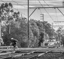 Cyclists of Melbourne by John Violet