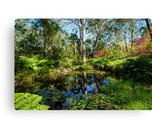 At the bottom of the Garden, Mt Wilson Canvas Print