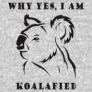 Koalafied by mobii