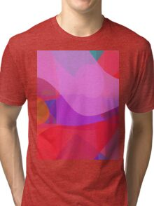 Love and Affection Tri-blend T-Shirt