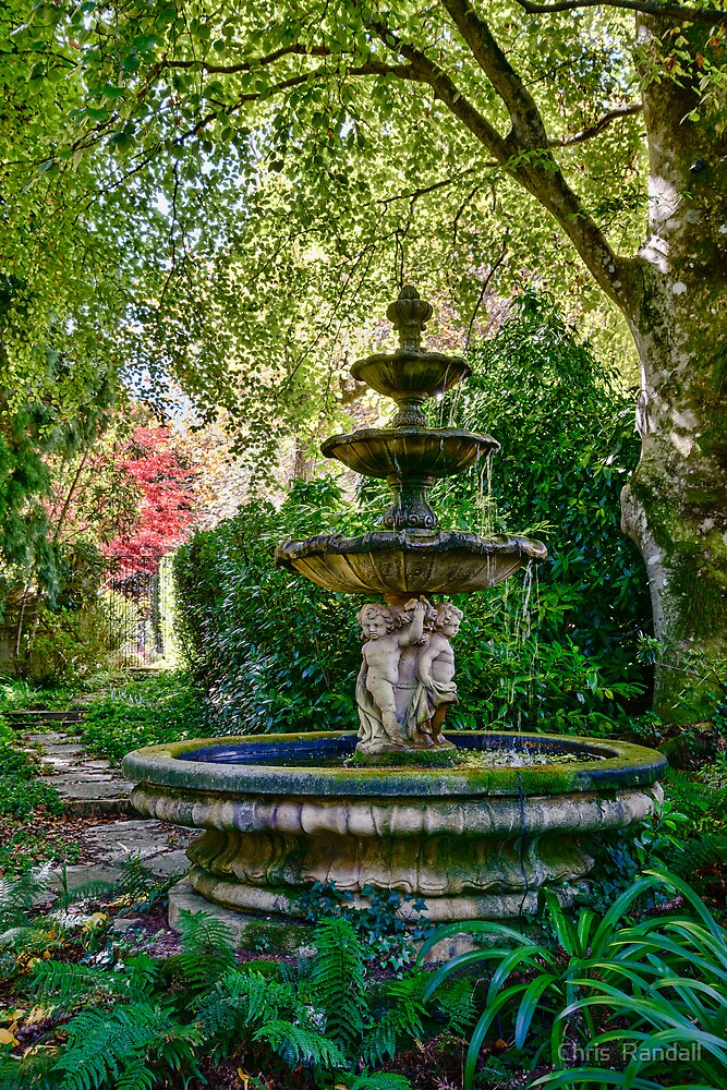 Hidden Fountain, Mt Wilson by Chris  Randall