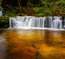 Falls Gold by redtree