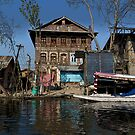 Cartoon - A slightly more run down section of the Dal Lake by ashishagarwal74