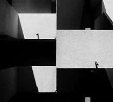 Lisses Shadows by Shane Rounce