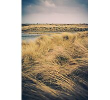 Bull Island, Ireland Photographic Print