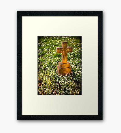 Gravestone with Snowdrops Framed Print
