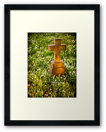 Gravestone with Snowdrops by mlphoto