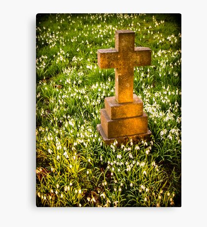 Gravestone with Snowdrops Canvas Print
