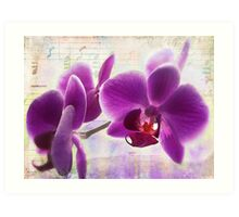 Etude in Purple Art Print