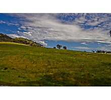 Sunny Hillside Photographic Print