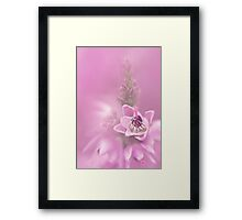 Heather I Framed Print