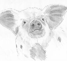 Piglet Drawing by MikeJory