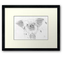 Piglet Drawing Framed Print