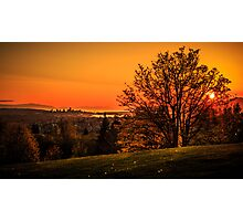 Burnaby Mountain Park Photographic Print