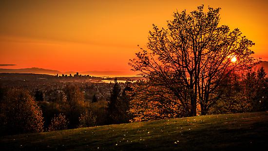 Burnaby Mountain Park by ChristianV