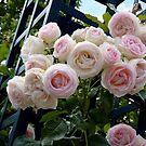 La Roseraie by bubblehex08