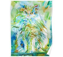 PERSIAN CAT - watercolor portrait Poster