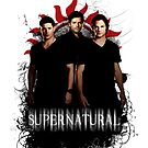 Supernatural - Dean, Sam &amp; Castiel ipad  by cedd1