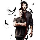 Supernatural - Dean &amp; Sam ipad by cedd1