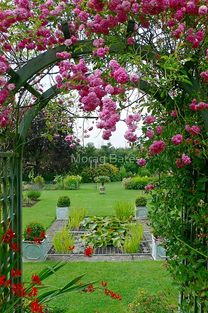 Worcestershire Garden by Morag Bates