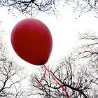 balloon by Talya Chalef