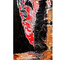 Red Devil Photographic Print