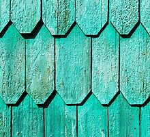 Green Shingle by Dave Hare