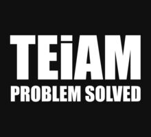 TEiAM Problem Solved by BrightDesign