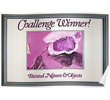 Banner - PNAO - Challenge Winner Poster