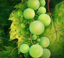 """The Grapes"" by Anna Ewa Miarczynska"